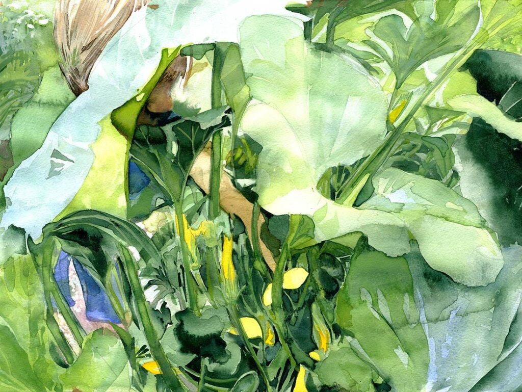 Yellow Squash - Garden Watercolor by Lee Lee, Haiku by Peter T Leonard