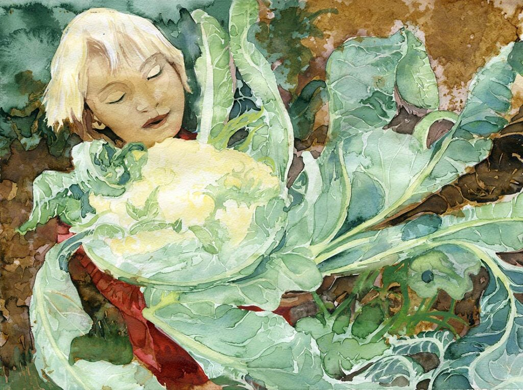 cauliflower - Garden Watercolor by Lee Lee, Haiku by Peter T Leonard