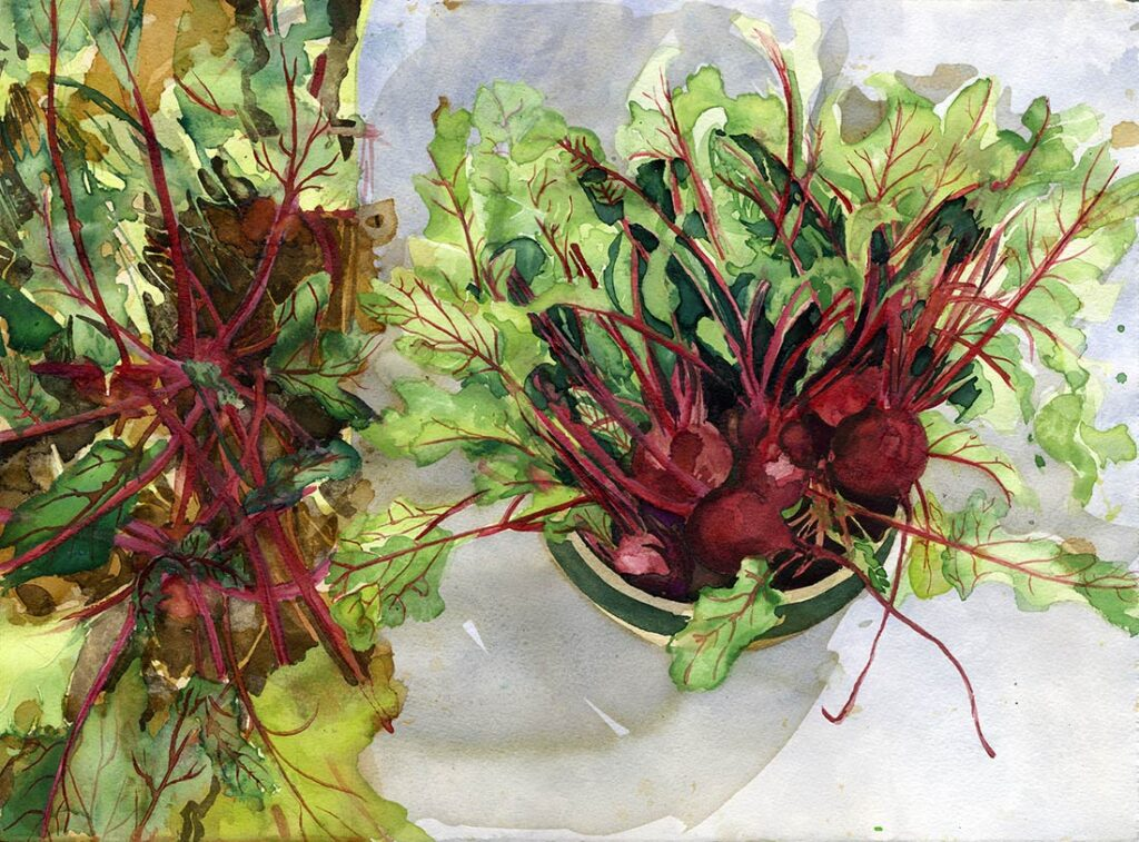beets - Garden Watercolor by Lee Lee, Haiku by Peter T Leonard
