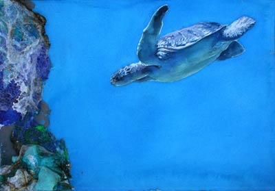 watercolor of sea turtle by Lee Lee