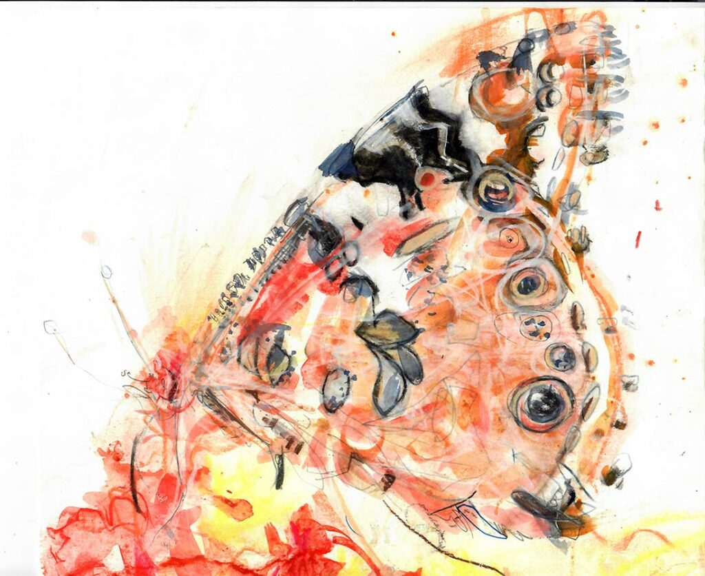 Watercolor of a painted lady butterfly by Lee Lee